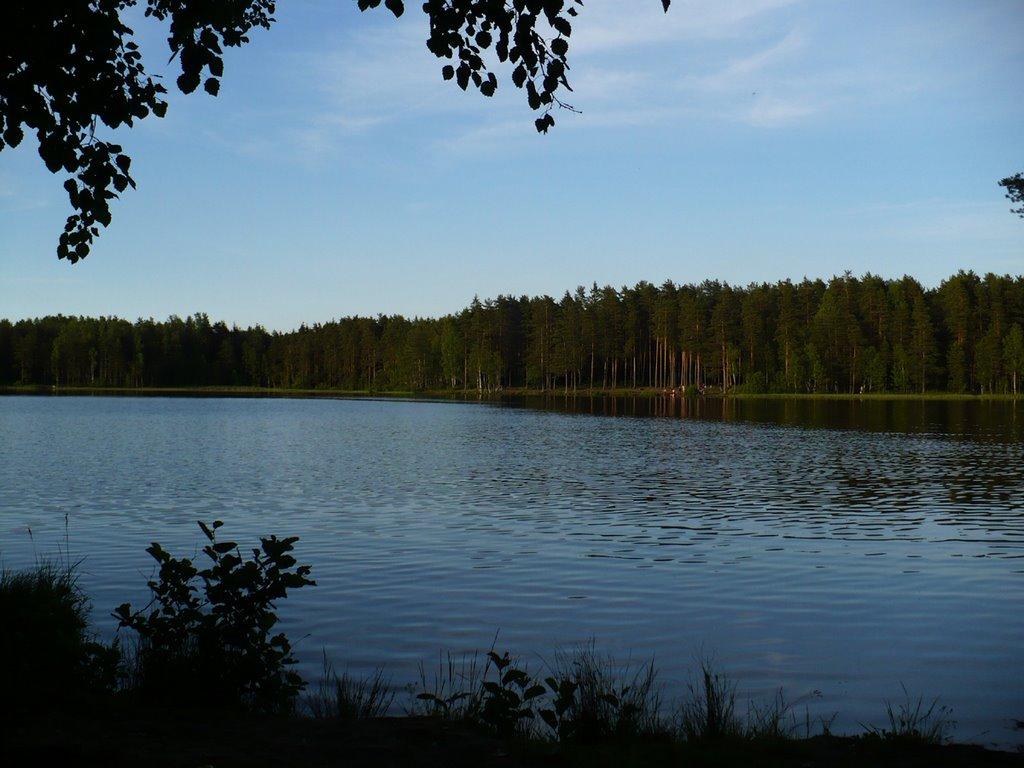Купить землю в ленинградской области у воды