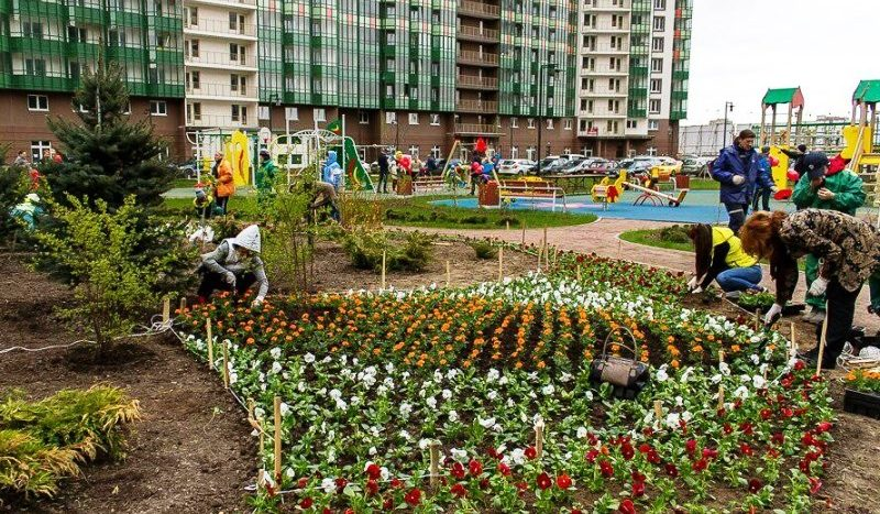 Greenландия Санкт Петербург квартира ленинградская