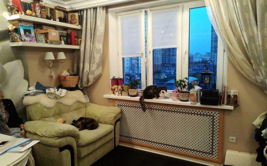 Продается 1 комнатная квартира на Богатырском пр. д.48. Приморский район СПб.